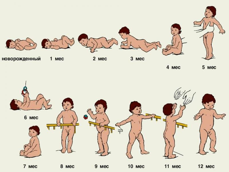 Развитие двигательной активности ребенка до года